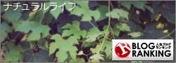 クッキー焼き男/カード描き男さん亀に変身