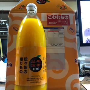 温州蜜柑ジュース