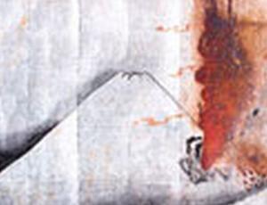 御岳山噴火から6年 ~被害最大~