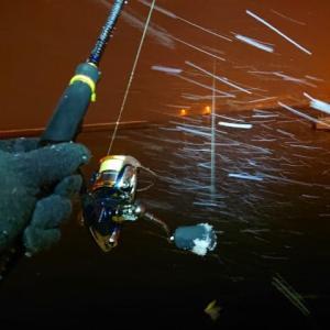 久々にキャストする釣り、久々のライトロック、久々の竜宮埠頭