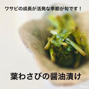 葉わさびの醤油漬け(^^)v