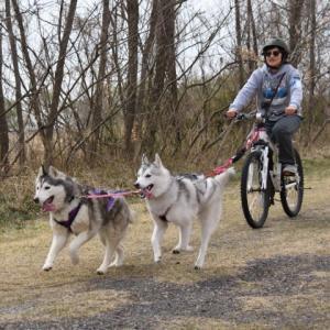 速報!「NKMCバイクジョアリングレース 2019」が開催されます!!