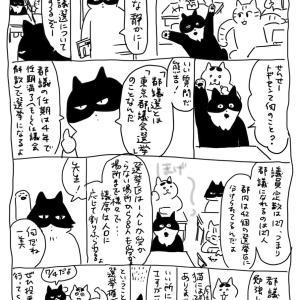 猫と都議選