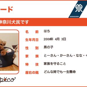 神奈川犬民カード