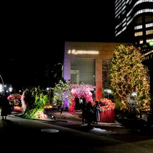 日比谷花壇設立70周年記念セレモニーを見てきました