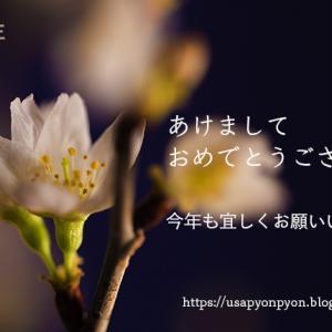 啓翁桜と共に、あけましておめでとうございます☆今年も宜しくお願いします!