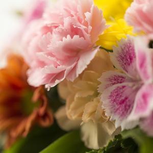 和風?洋風?何歳?ライフスタイルは?「敬老の日」に贈りたいお花を日比谷花壇で選ぶ♪