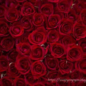 メンズの皆様!愛妻の日・逆バレンタイン・ホワイトデー♪プロポーズする人、奥様へ結婚記念日に、彼女とのアニヴァーサリーデーに!