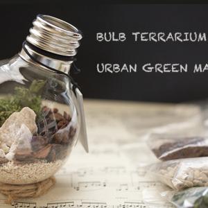 「URBAN GREEN MAKERS」のお洒落な電球型のテラリウム・キットは支援にも繋がり「父の日」のプレゼントにも♪