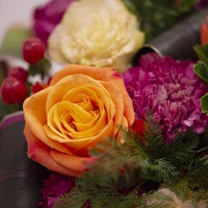 9月の行事に飾りたいお花「重陽の節句」「お月見」「敬老の日」
