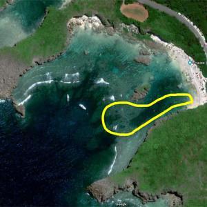 中の島ビーチのシュノーケル動画