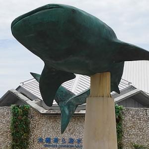 沖縄2日目午後から美ら海水族館