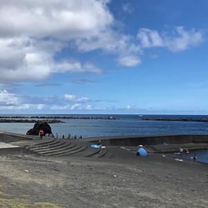 八丈島と御蔵島(予備日はシュノーケリングで)その3