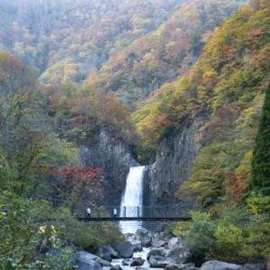南越後紅葉三昧 ⑤苗名滝と笹ヶ峰牧場