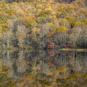 南越後と北信紅葉三昧 ⑥戸隠鏡池の水鏡