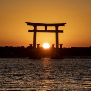 鳥居と夕陽