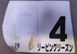 リーピングリーズン号ゼッケン当選