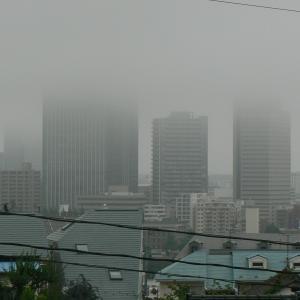 八木山は今夜も雲の中