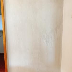 壁クロスの洗浄&クロス貼替え