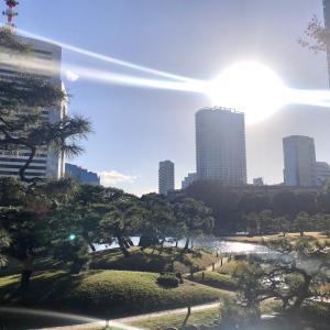 ★御光が差すパワースポット - 旧芝離宮恩賜庭園