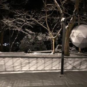 積雪15センチ位