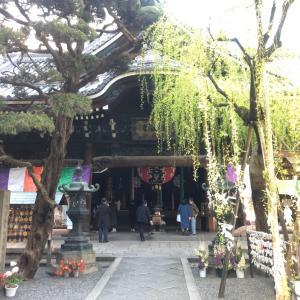 2020 春が来た! 六角堂・世界遺産 東寺夜桜♪