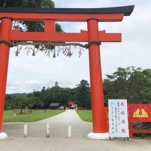 上賀茂神社 夏越の祓