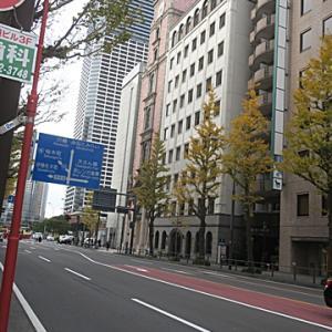 【横浜馬車道では・・・】秋の終わりを感じつつホームへ・・・