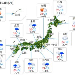 【今日は雨模様】で涼しい一日みたいです。