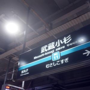 【さあて、今日も武蔵小杉で乗り換えて】みました