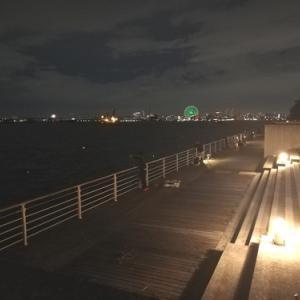今日の大阪湾のタッチー情報 ータチウオ5本目ー