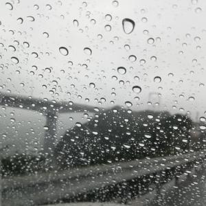 今月も雨が多い。グレも行きたいがまだチヌも追えるか