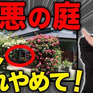 【注文住宅】後悔する庭の造り6選!一級建築士が徹底解説!