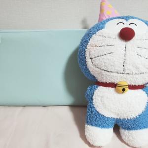 【日本初!】枕外来受診して、枕営業を受けた話。