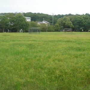 サッカーゴールのあるグラウンド 田尻北公園 (静岡県焼津市田尻北1284外)