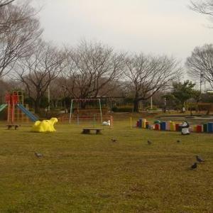 複合遊具,幼児用プールがある 東新田公園 (静岡県静岡市駿河区東新田4丁目4)