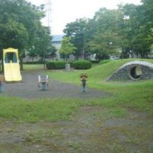 スプリング遊具,土管遊具,2連式滑り台   くすのき公園 (静岡県焼津市八楠3-4-51)