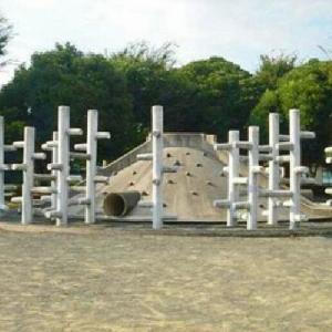 市役所の西側 複合遊具と山遊具 みどり公園 (静岡県藤枝市岡出山1₋11)