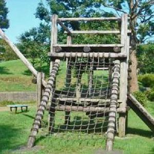 木製アスレチック遊具が人気 谷田宮の後公園 (静岡県静岡市駿河区谷田26)