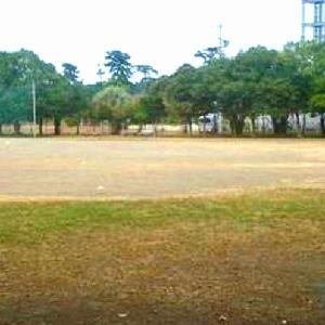 グラウンド,複合遊具 松原公園 (静岡県焼津市田尻北698他)