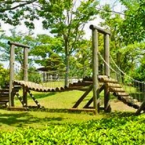 アスレチック遊具,多目的グラウンド,プール 安養寺運動公園 (静岡県掛川市淡陽116)