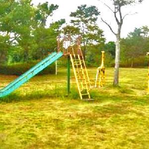 遊具があるピクニック広場,グラウンド,プール 和田公園 (静岡県菊川市(旧小笠郡菊川町)和田1057)