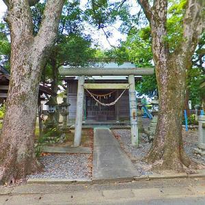 推定樹齢500年の巨木 市指定天然記念物の大クス 須賀神社 (静岡県磐田市西島字北浦411)