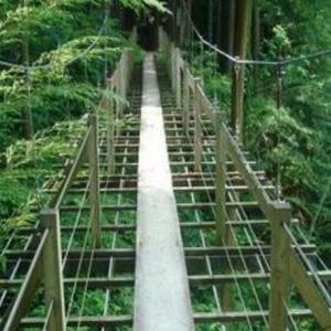 竹林の谷に架かる吊り橋 島田市中央公園 (静岡県島田市野田1689)