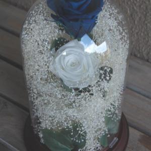 1周年の結婚記念日に 青と白のバラ