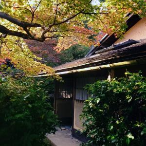 秋の京都 大河内山荘【茶室 滴水庵】男の茶道★沼尻宗真