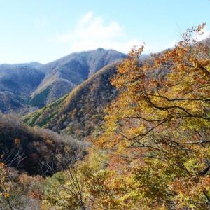 新潟県の紅葉・・3