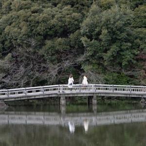 新宿御苑・・2