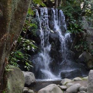 名主の滝公園・・1