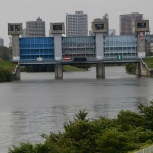 岩渕青水門